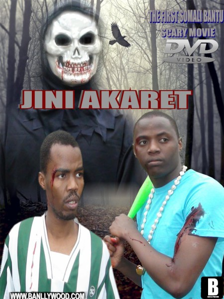 Jini Akaret Film 2013 Banllywood Movie